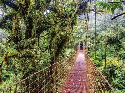 Kostarika s vůní kávy
