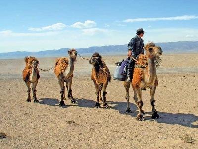 Čína - Mongolsko