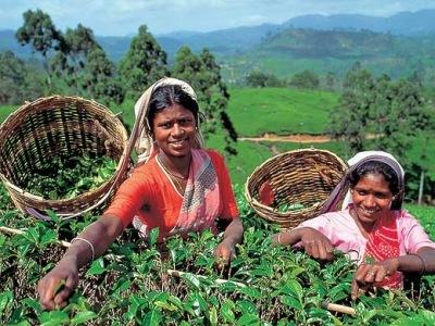Srí Lanka a Indie