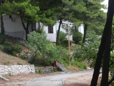 Sagitta bungalovy